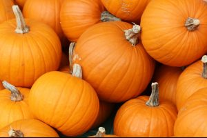 Pumpkin themed flavors take over this autumn.
